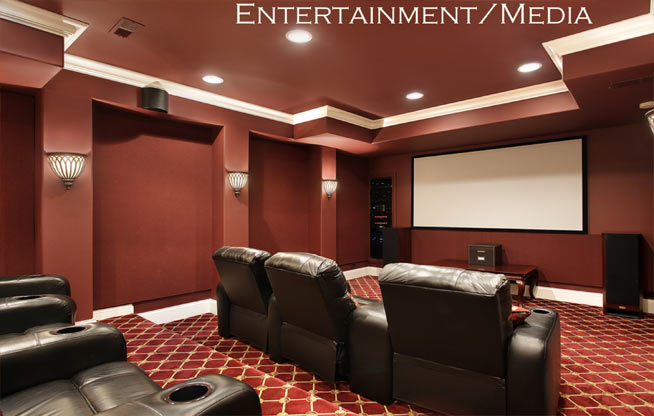 Entertainment/Media Rooms - Legacy Building and Design